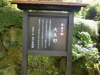 101105-6成川美術館5.JPG